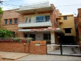 Hotel Blooming House Homestay Jodhpur Hotel Reservations In Jodhpur
